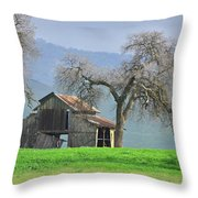 Not Much Time Left Throw Pillow