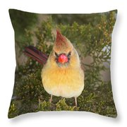 Not-so-angry Bird Throw Pillow