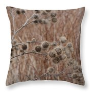 Not So Prickly Throw Pillow