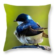 Not Speaking To You Throw Pillow
