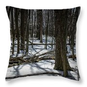 Not Spring Yet Throw Pillow
