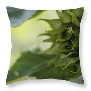 Not Sunny Yet Throw Pillow