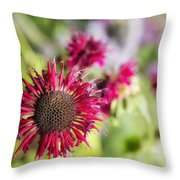 Not Yet Faded Throw Pillow