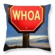 Not Your Ordinary Stop Sign Throw Pillow