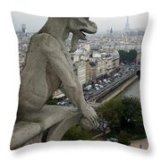 Notre Dame Gaze Throw Pillow