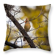 November Cardinal Throw Pillow