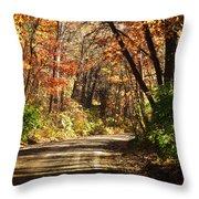 November Colors 5 Throw Pillow