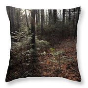 November In The Pines Throw Pillow