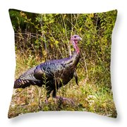November  Oh My Throw Pillow