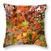November's Maples Throw Pillow