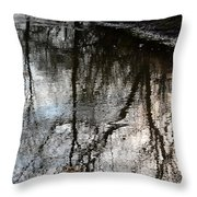 November's Rippled Reflections Throw Pillow