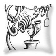 Now That We've Cleared That Up Throw Pillow