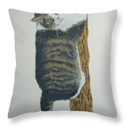 Now What??? Throw Pillow