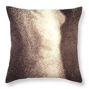 Nude Female Torso Drawings 4 Throw Pillow