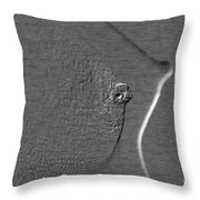 Nude Girl Breast And Nipple 1277.03 Throw Pillow