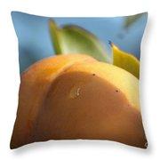 Nude Persimmon Throw Pillow