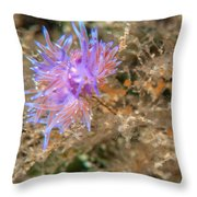 Nudibranch 2 Throw Pillow