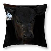Number 146 Throw Pillow