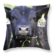 Number 7484 Throw Pillow