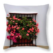 Number 9 - Geraniums In The Window Throw Pillow