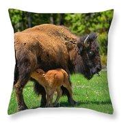 Nursing Newborn Throw Pillow