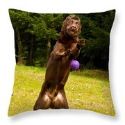 Nute And The Ball Throw Pillow