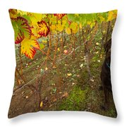 Nute Watches The Vines Throw Pillow by Jean Noren