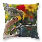 Nuthatch Bird On Finger Photo Throw Pillow