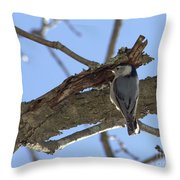 Nuthatch Getting To The Good Stuff Throw Pillow