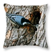 Nuthatch Love Throw Pillow