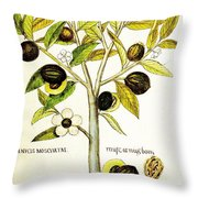 Nutmeg Plant Botanical Throw Pillow