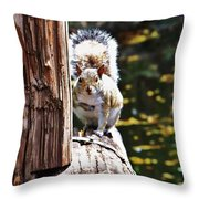 Nuts Throw Pillow