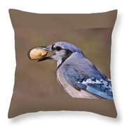 Nutty Bluejay Throw Pillow