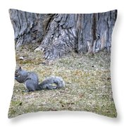 Nutty Throw Pillow