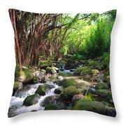Banyan Nuuanu Stream Throw Pillow