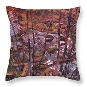 Suzie's Creek Throw Pillow
