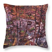 Suzie's Creek Throw Pillow