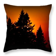 Nw Evening L Throw Pillow