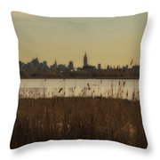 Nyc Landscape Throw Pillow