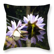 Nymphaea Colorata. Water Lilies Throw Pillow