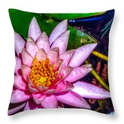 Nymphaeaceae Throw Pillow