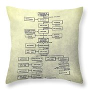 Nystatin Production Chemistry Patent Throw Pillow