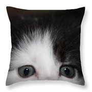 O M G Throw Pillow