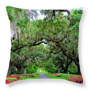 Oak Allee Brookgreen  Throw Pillow
