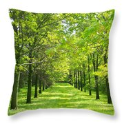 Oak Allee Throw Pillow