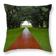 Oak Alley Path Throw Pillow