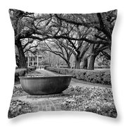 Oak Alley Plantation Landscape In Bw Throw Pillow