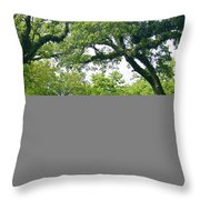 Oak Alley Trees Throw Pillow