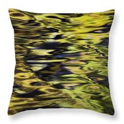 Oak And Maple Trees Reflections In Throw Pillow