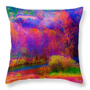 Oak Creek Acid 2 Throw Pillow